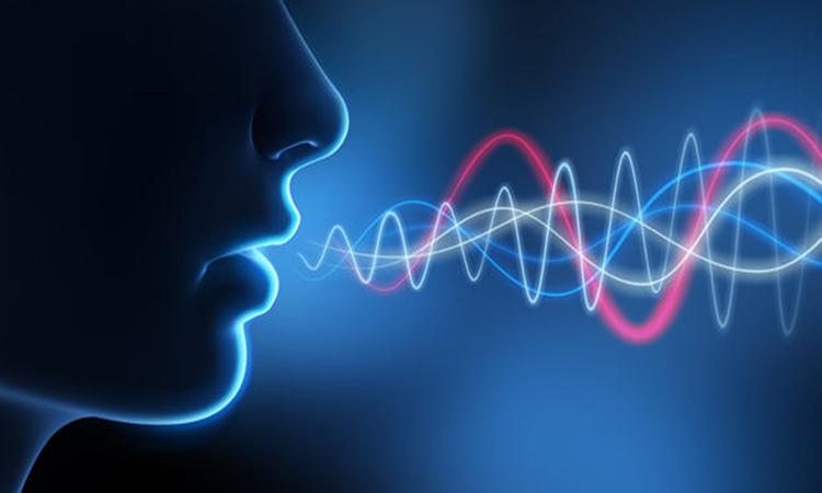 tích hợp giọng nói