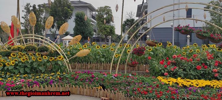 Hoa xuân rực rỡ sắc màu 2021