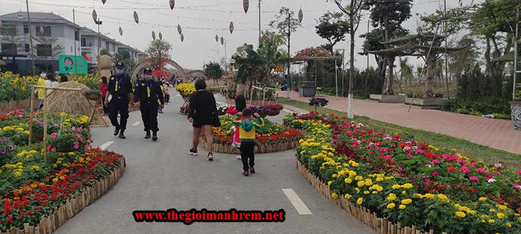 Hai bên đường hoa xuân