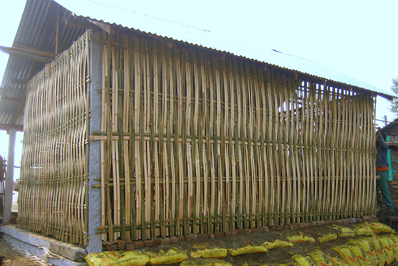 Tường tre dựng thành nhà